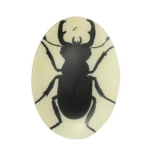 INSECT SILHOUETTE OVAL PLATE