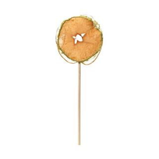 CALIFORNIA CRISPS APPLE LOLLIPOP